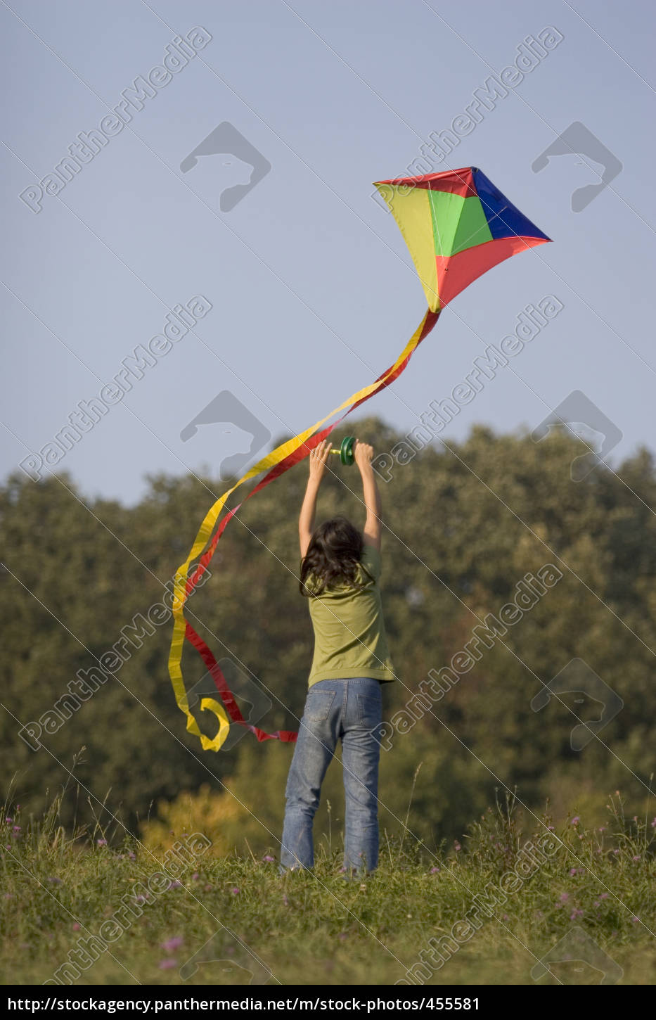 kite, flying, in, autumn - 455581
