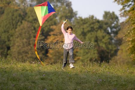 kite, flying, in, autumn - 455584