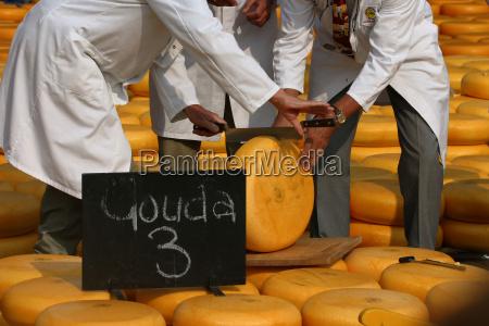 cheese, trade, -, alkmaar - 461204
