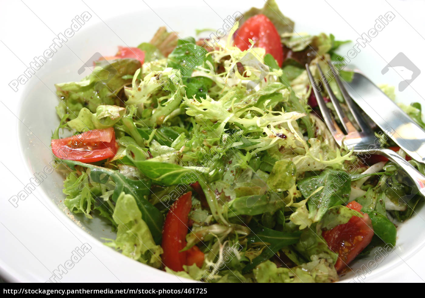 salad - 461725