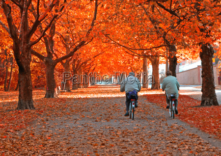 cycling, in, autumn - 462515