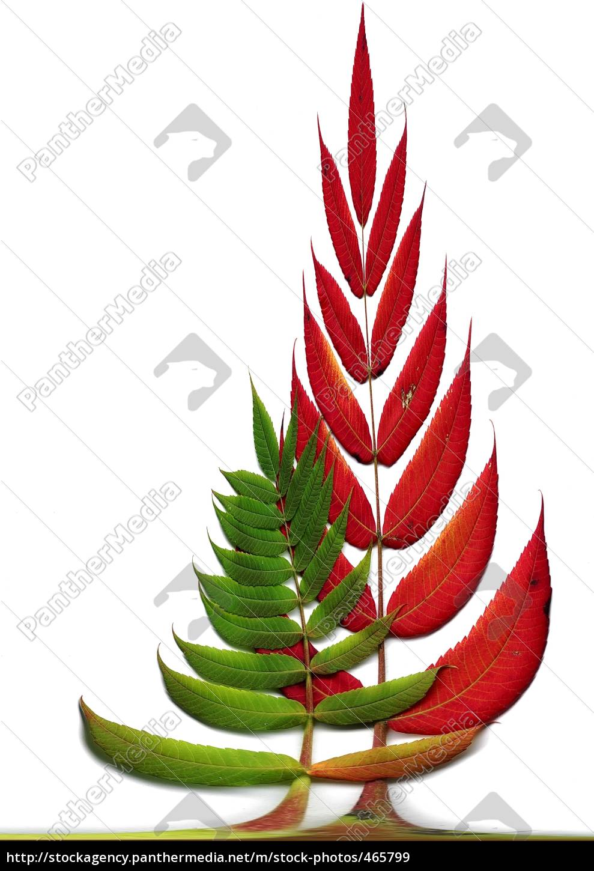 autumnal, impression - 465799