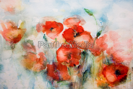 poppies, watercolor - 467453