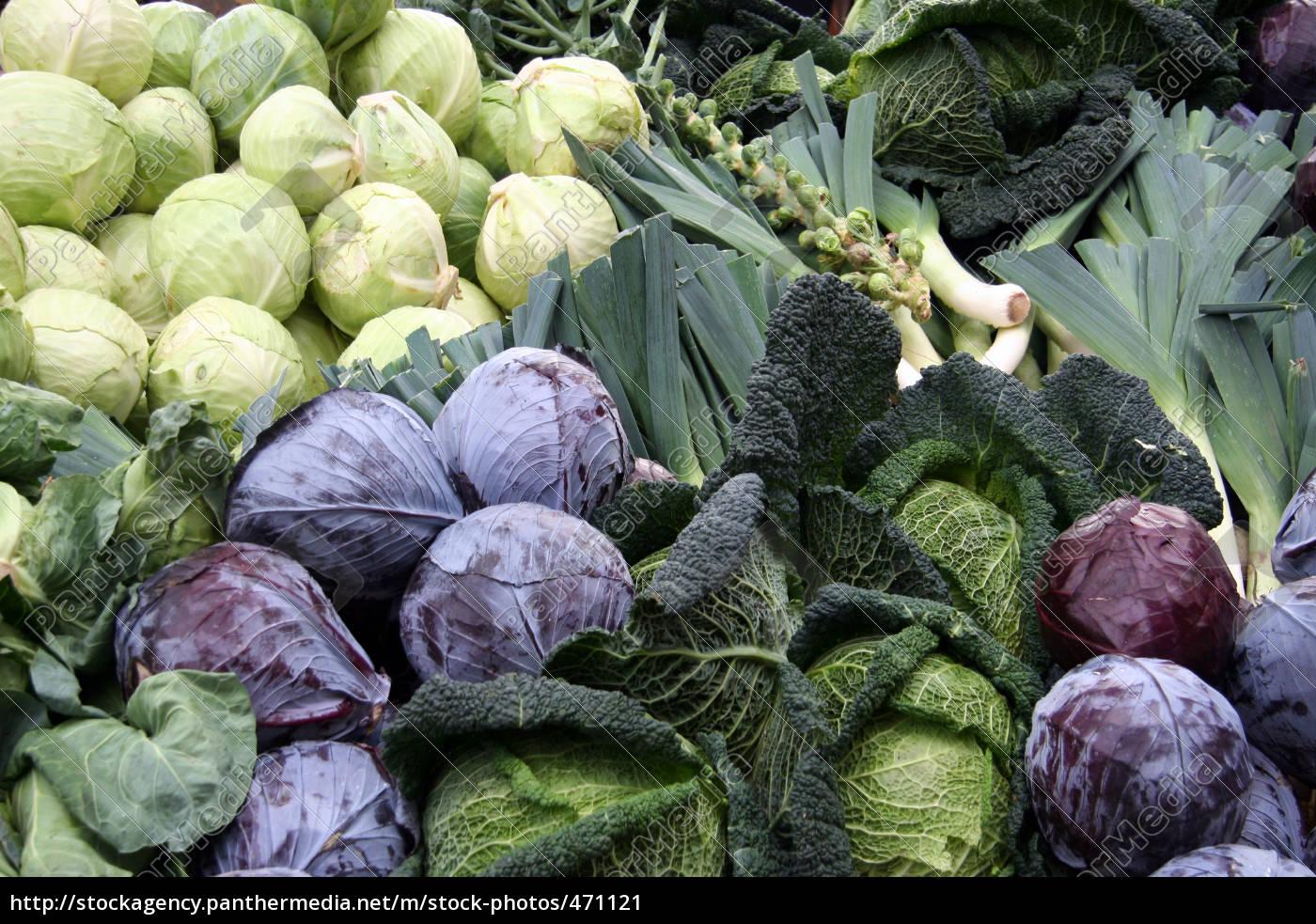 winter, vegetables - 471121