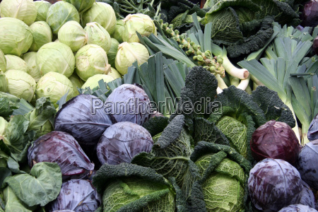 winter, vegetables - 471121