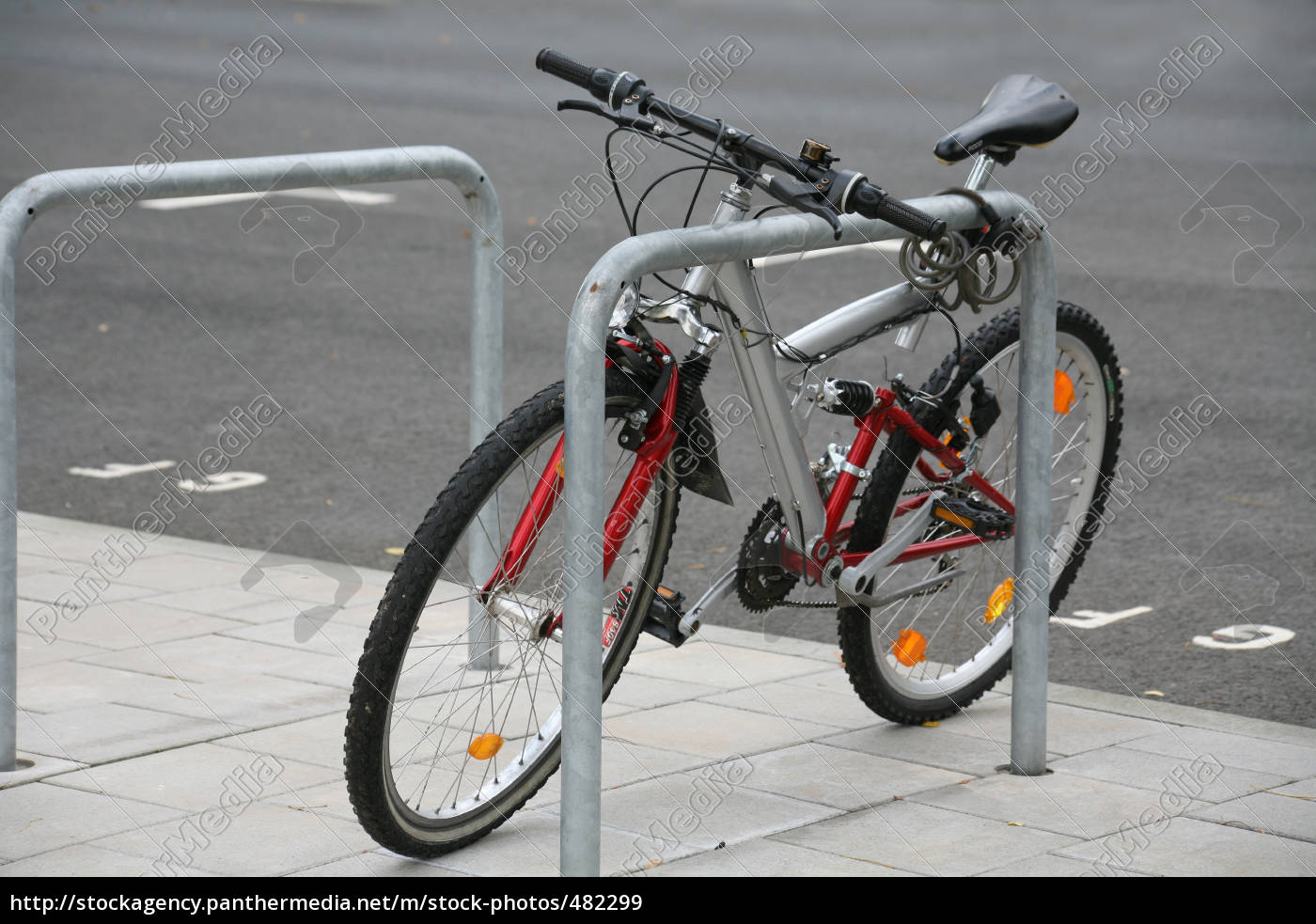 bicycle - 482299