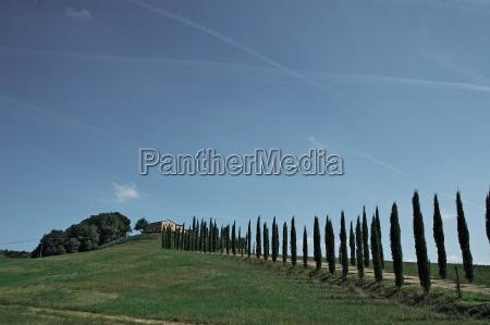 tuscany, 3 - 482217