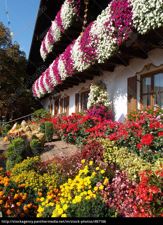 farmhouse, garden - 487166