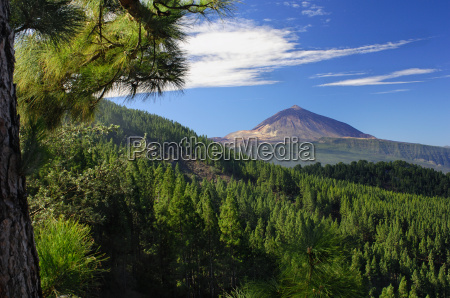 teide and orotava tenerife