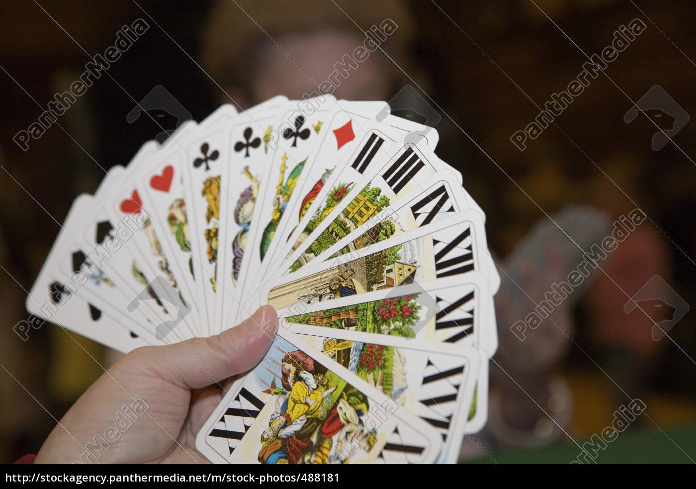 tarok, cards - 488181