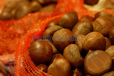 chestnuts - 489037