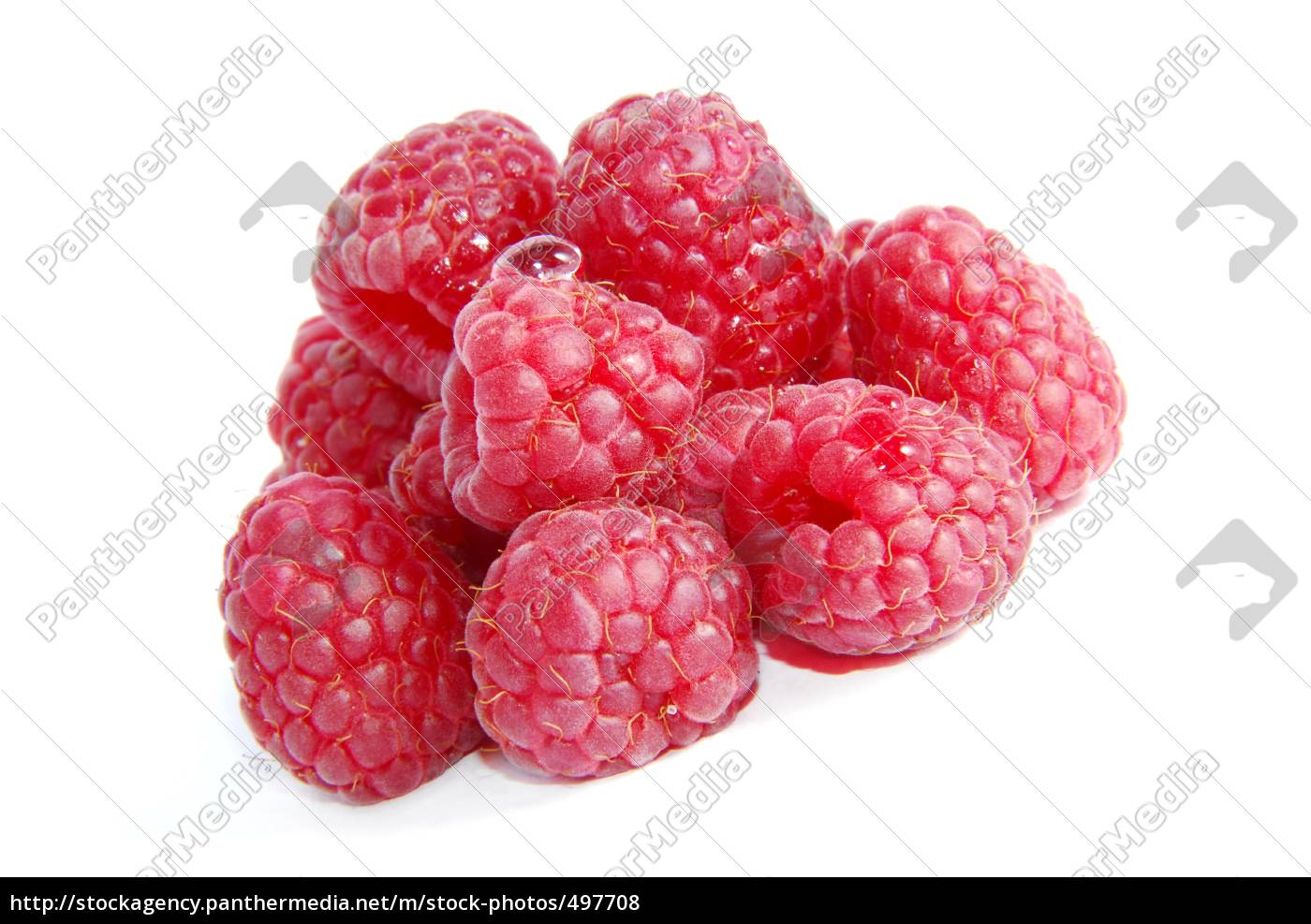 raspberries - 497708