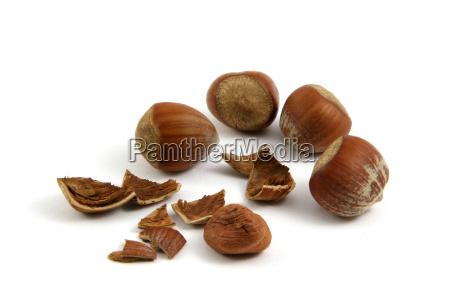 hazelnuts - 514147