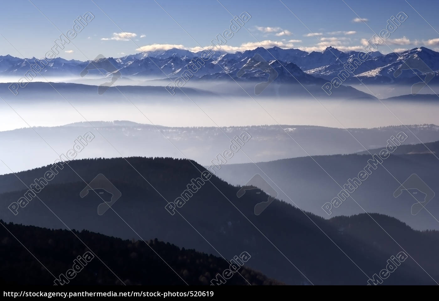 fog - 520619