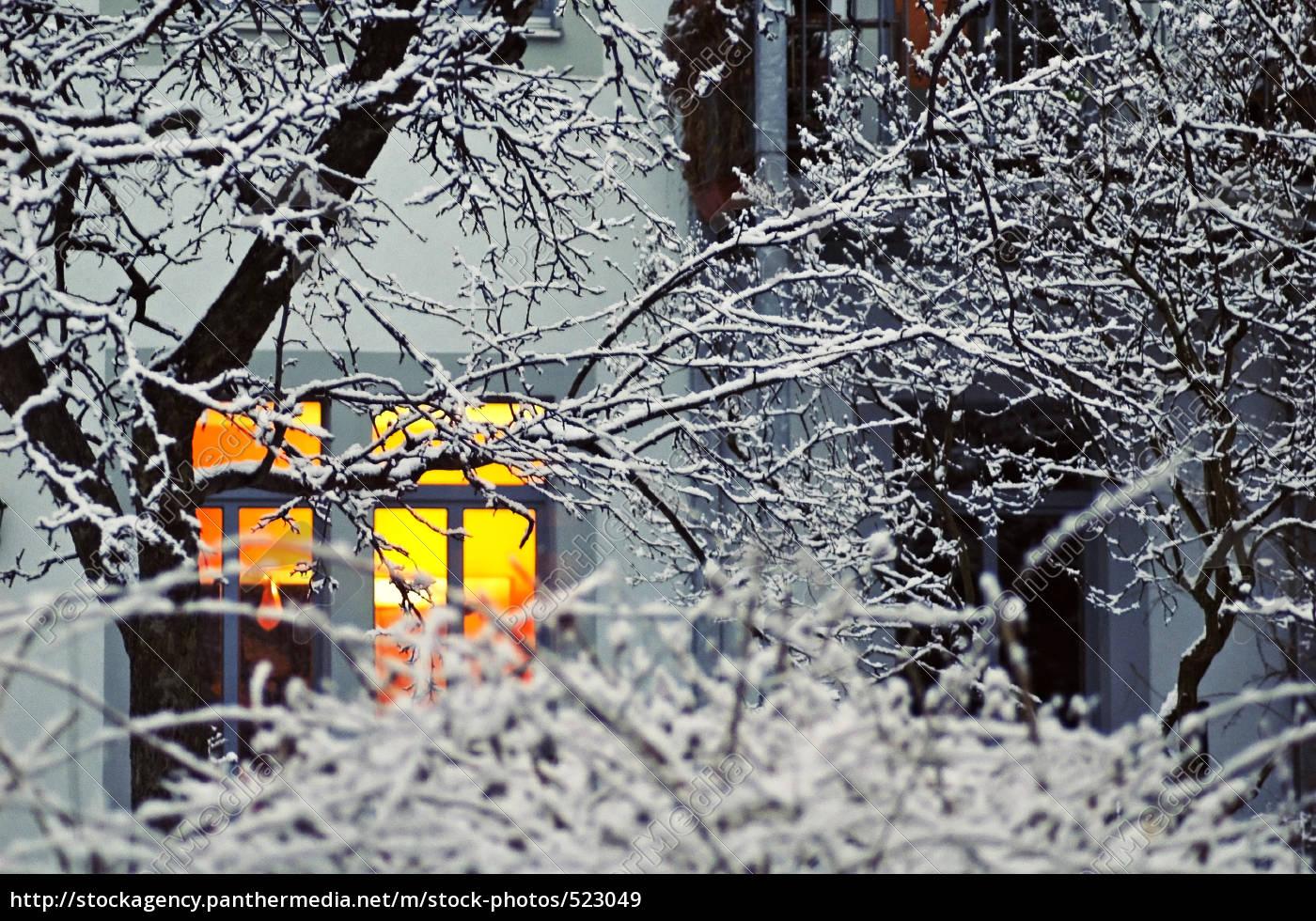 last, winter - 523049