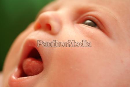infant - 524911