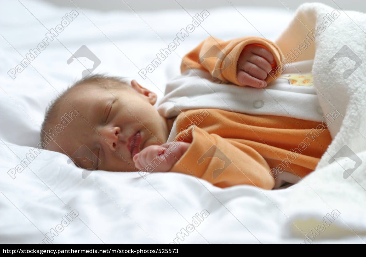 baby - 525573