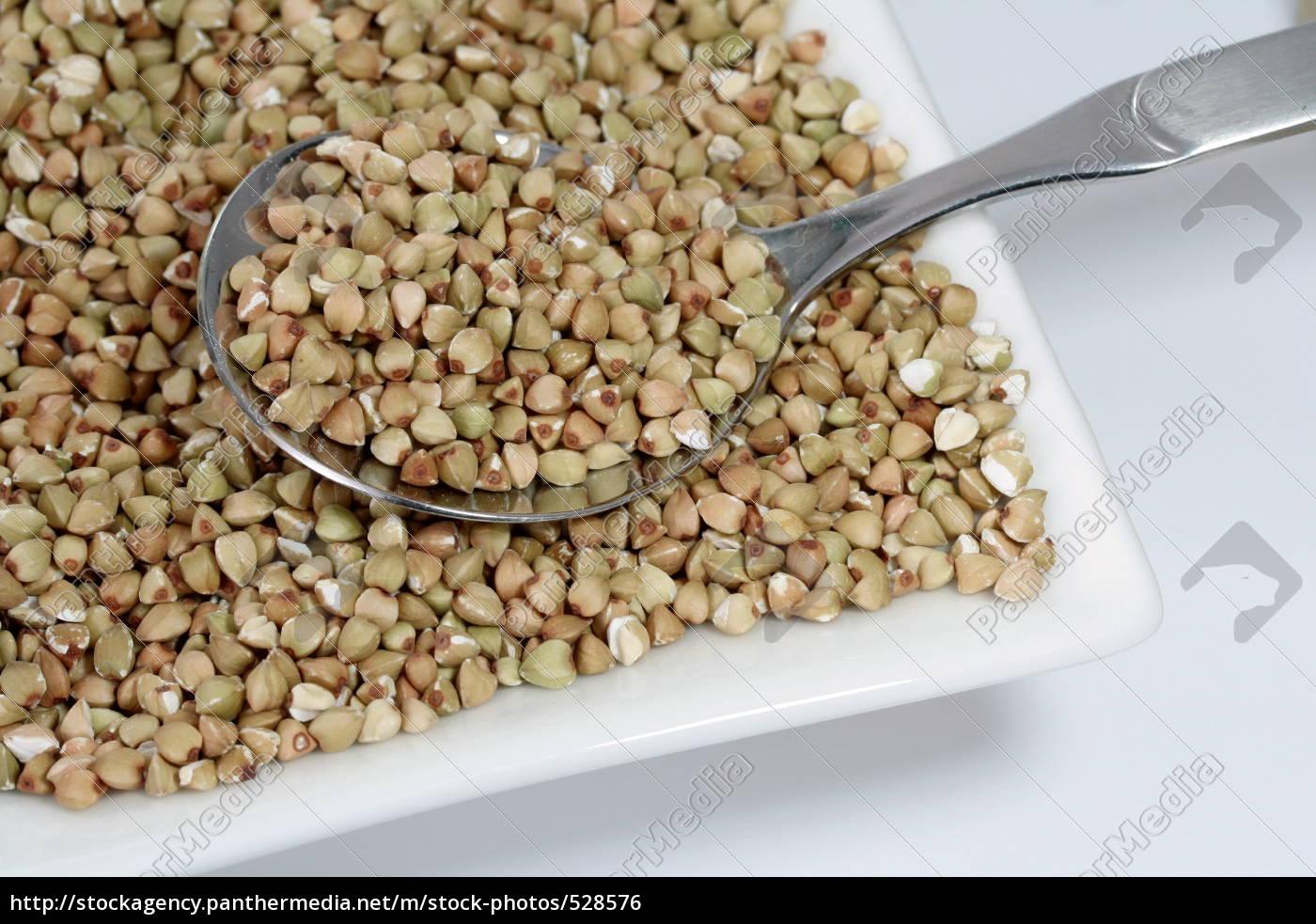buckwheat - 528576