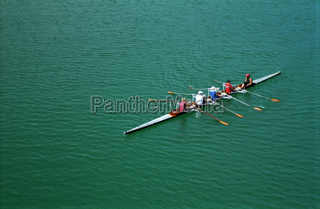 rower - 528333