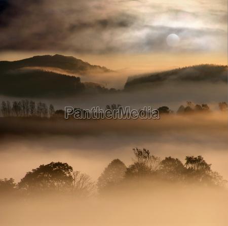 fog worlds