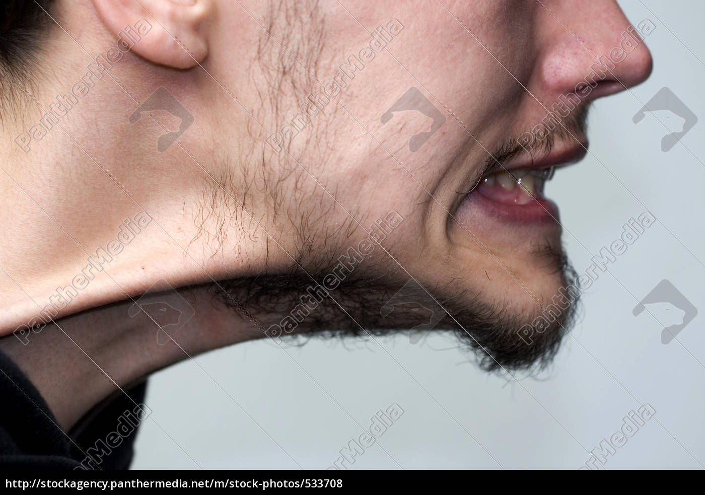 sinewy, neck - 533708