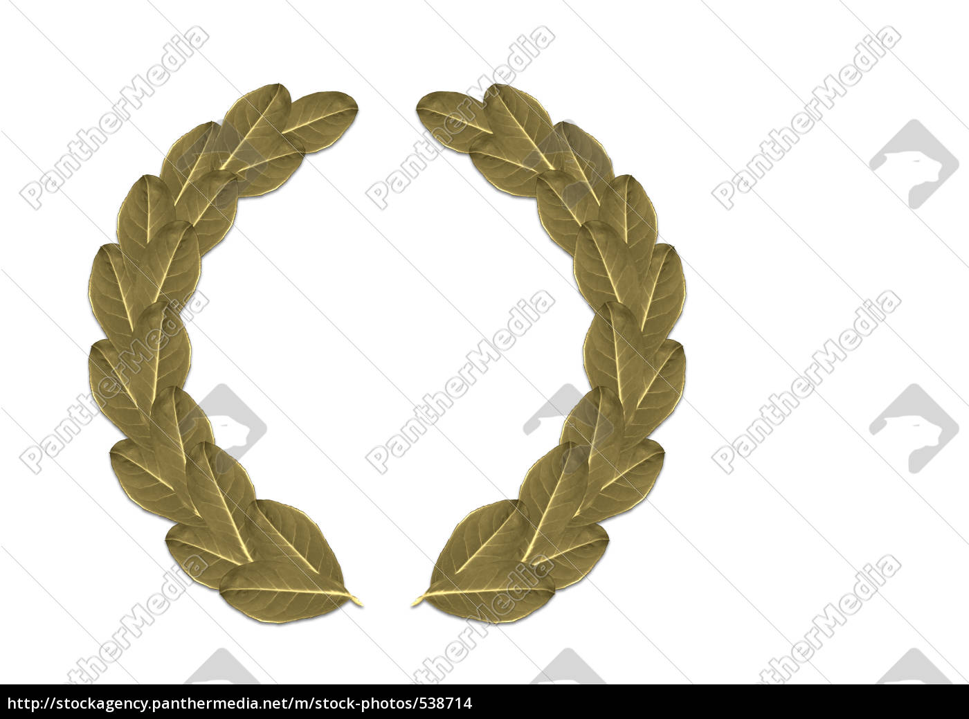 laurel, wreath - 538714