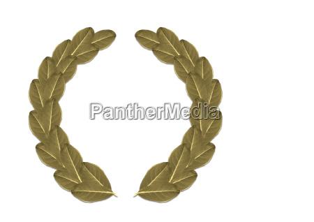 laurel, wreath - 538714