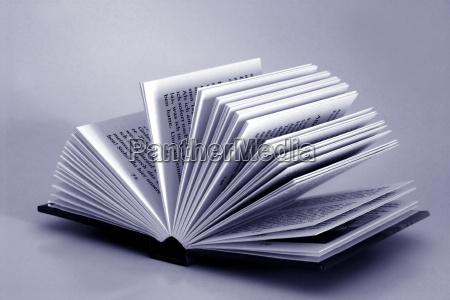 reading - 539355