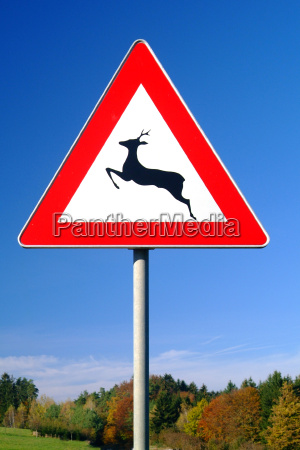 road, sign, deer, crossing - 544978