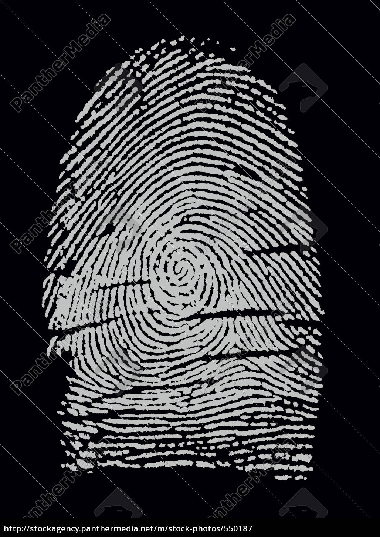 fingerprint, ii - 550187