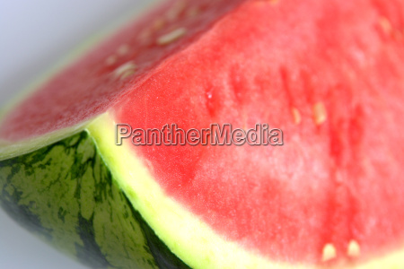 melon - 551404
