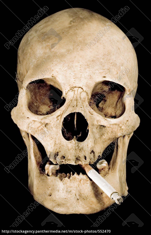 no, smoking - 552470