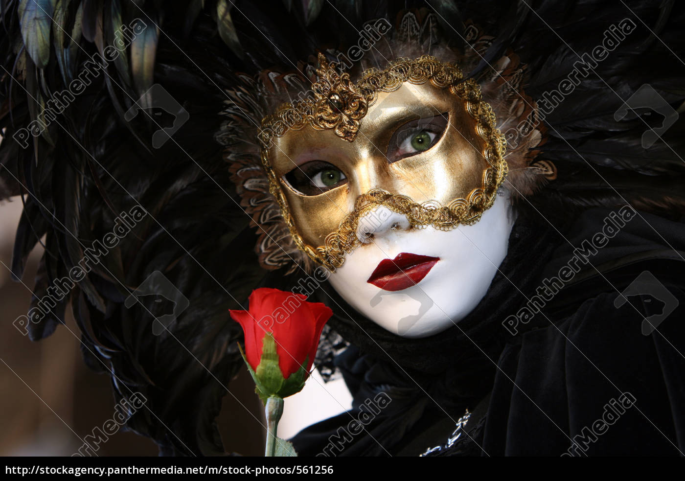 black, mask, with, red, rose, 2 - 561256