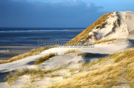 sand, dunes - 563828