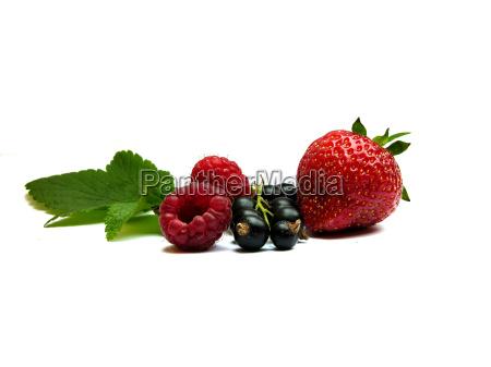 soft, fruit - 569526