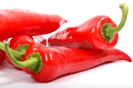 paprika - 570502