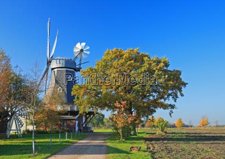gallery dutch windmill 2