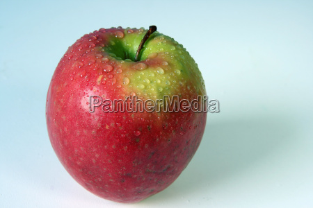 apple, pink, lady - 574186