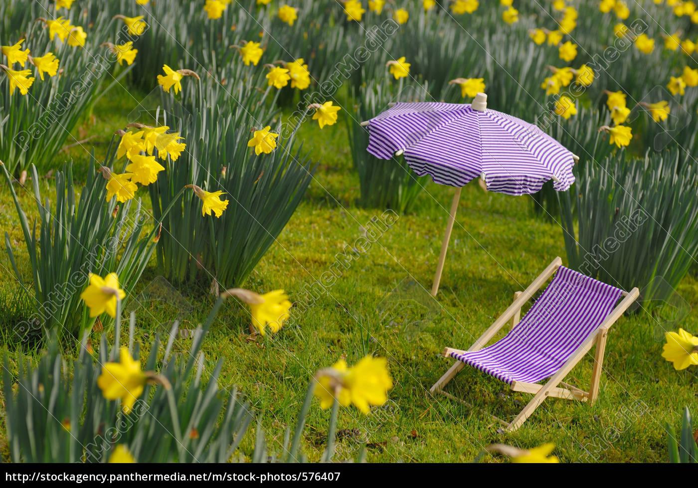 deckchair, on, a, narzissenwiese - 576407