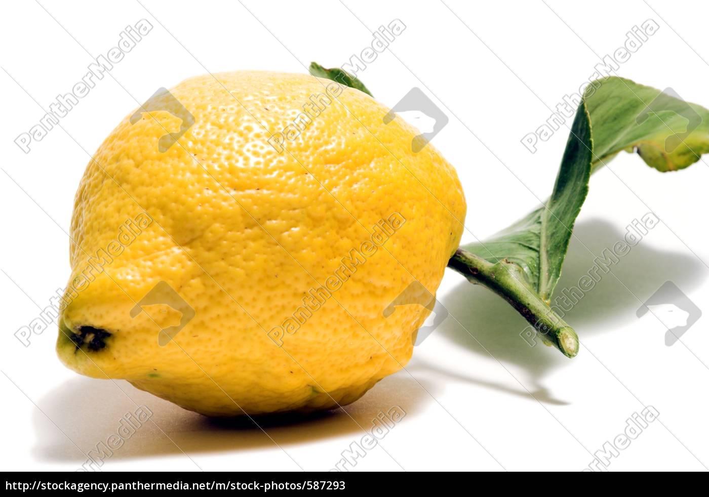 lemon, with, leaf - 587293