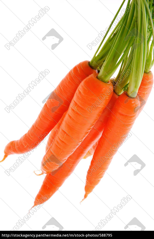 carrots - 588795