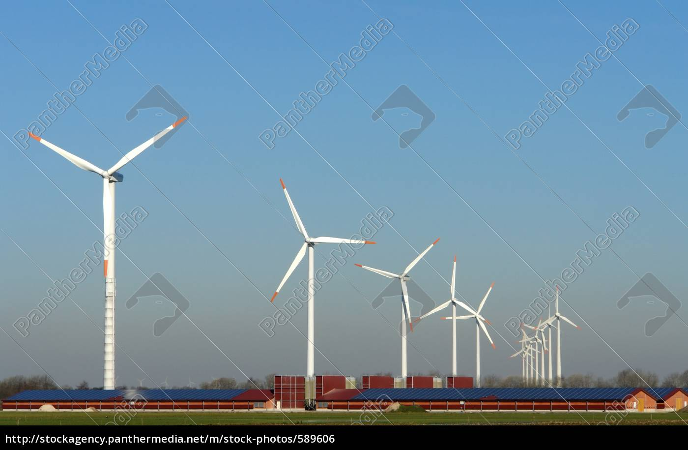 wind, and, solar, energy - 589606