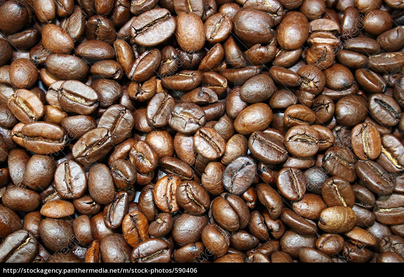 coffee, beans - 590406