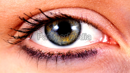 fascination, of, the, eye - 592297