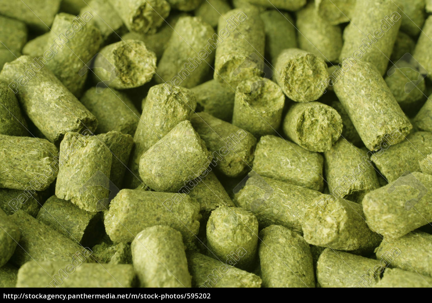 hop, pellets - 595202