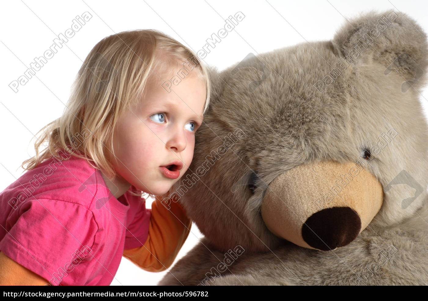 teddy - 596782