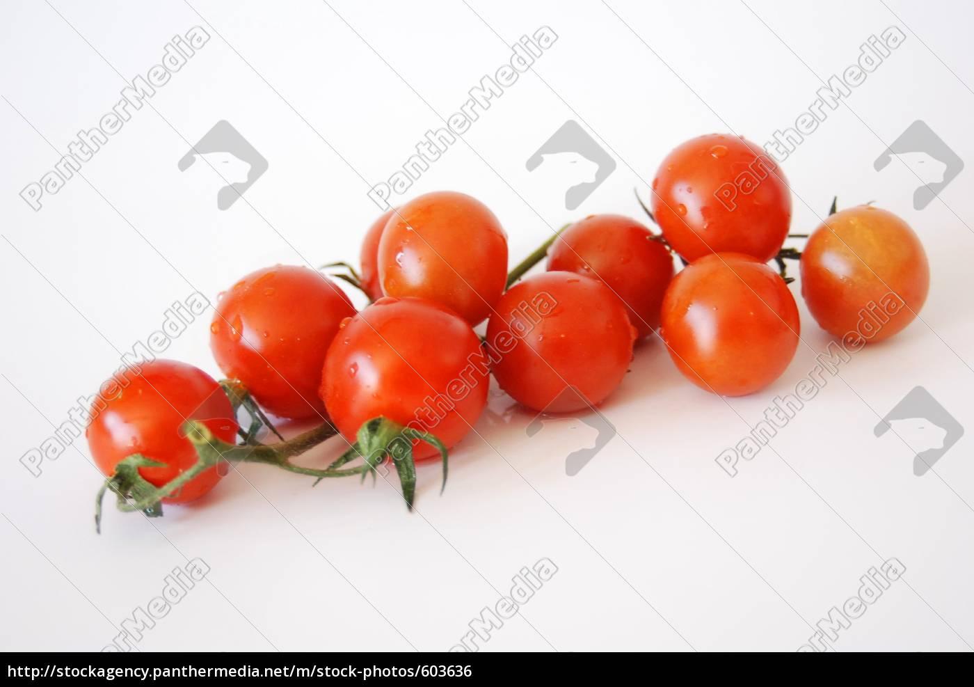 tomatoes - 603636