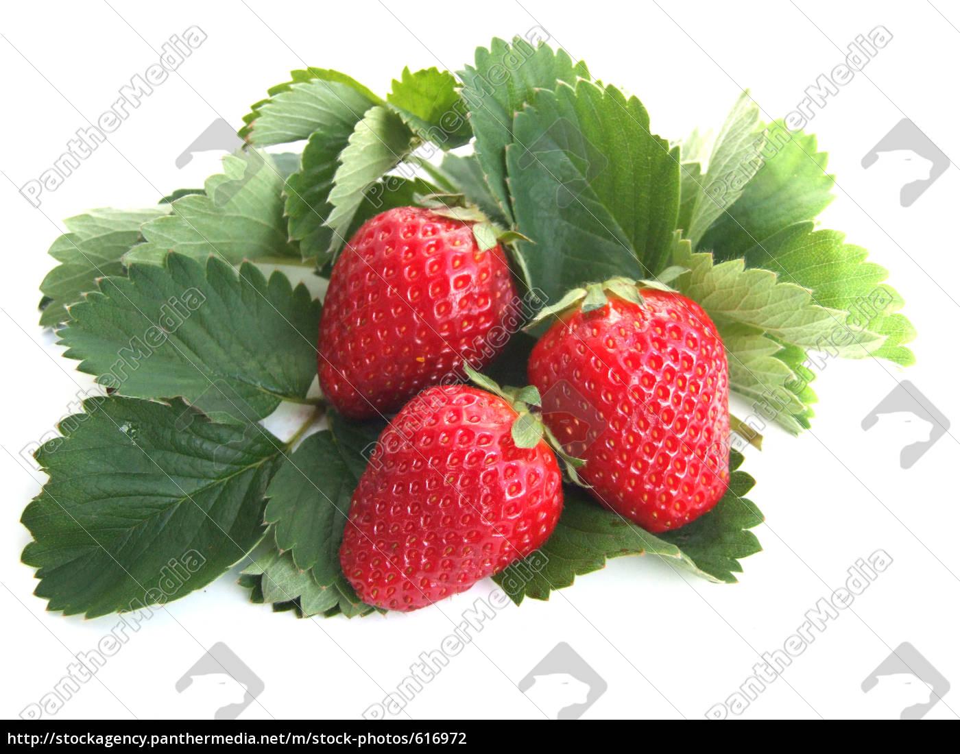 strawberries - 616972