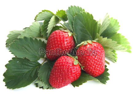 strawberries - 616972