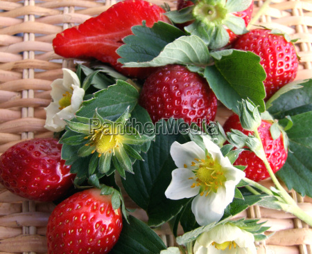 strawberries - 616979